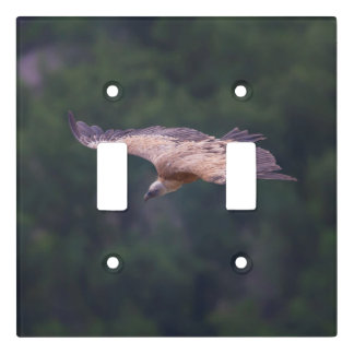 Griffon vulture, France Light Switch Cover