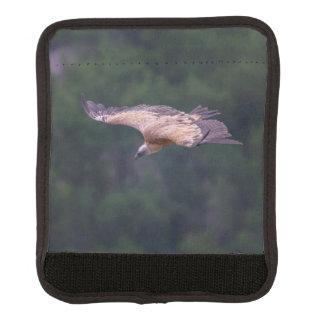 Griffon vulture, France Luggage Handle Wrap