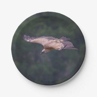 Griffon vulture, France Paper Plate