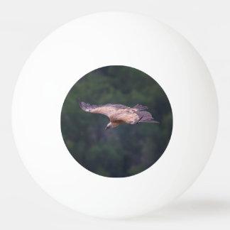 Griffon vulture, France Ping Pong Ball