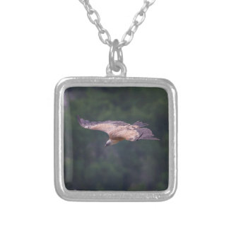 Griffon vulture, France Silver Plated Necklace