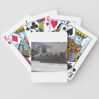 Grilling fish outdoors bicycle playing cards