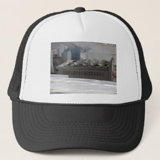 Grilling fish outdoors trucker hat