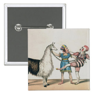 Grimaldi and the Alpaca in the Popular Pantomime Pin