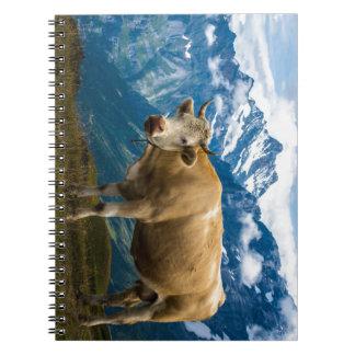 Grindelwald Cow - Bernese Alps - Switzerland Notebook