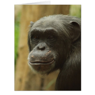 grinning chimp card