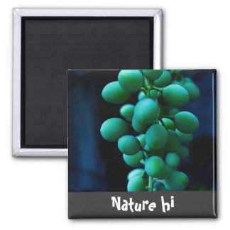 grip on grapes square magnet