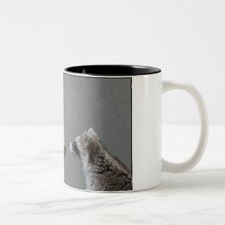Grizzle Bear Meets Raccoon Mugs