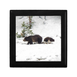 Grizzlies in the Snow Jewelry Boxes