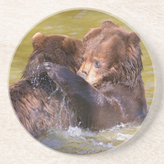 Grizzlies in the water coaster