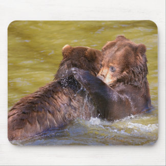 Grizzlies in the water mouse pad