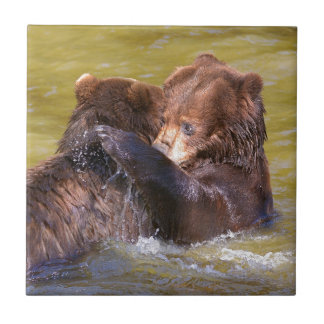 Grizzlies in the water tile