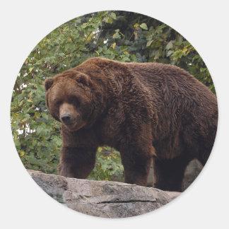grizzly-bear-004 classic round sticker
