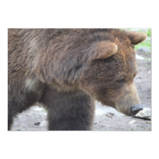 "Grizzly Bear 5"" X 7"" Invitation Card"