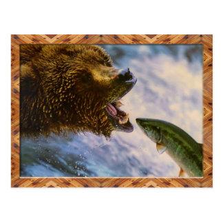Grizzly Bear Catching Steelhead Salmon Postcard