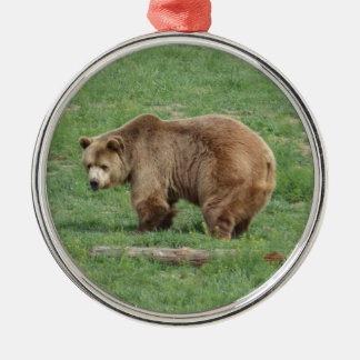 Grizzly Bear Christmas Ornament