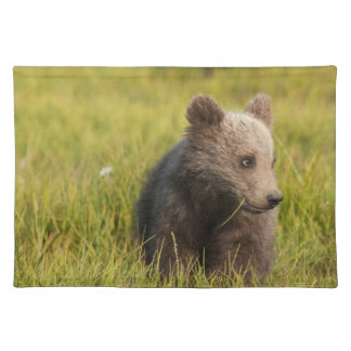 Grizzly Bear Cub Placemat