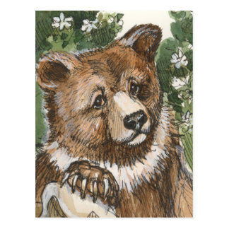 Grizzly Bear Cub Postcard