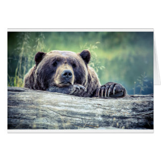Grizzly Bear Design Card