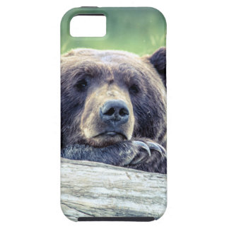 Grizzly Bear Design iPhone 5 Case