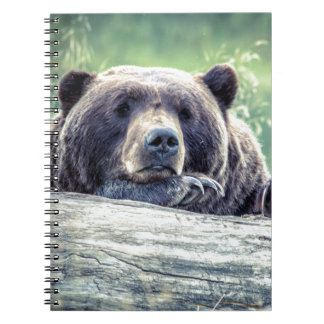 Grizzly Bear Design Notebook