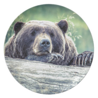 Grizzly Bear Design Plates