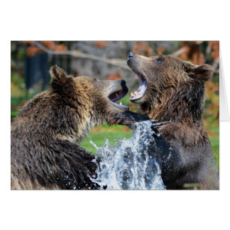 Grizzly bear fight greeting card