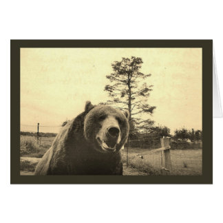 Grizzly Bear Greetings Greeting Card