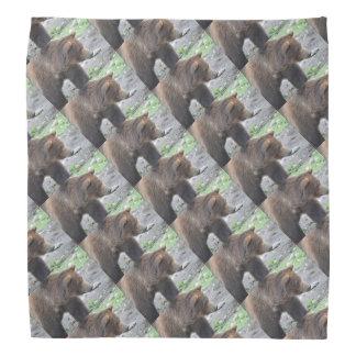 Grizzly Bear Kerchiefs