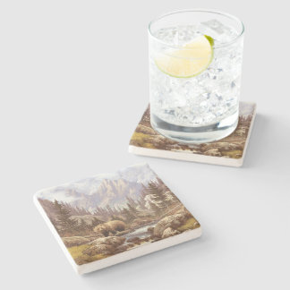 Grizzly Bear Landscape Stone Coaster