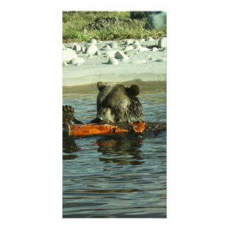 Grizzly Bear Playing with Log Photo Card Template