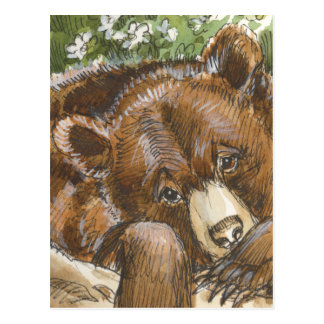 Grizzly Bear Resting Postcard