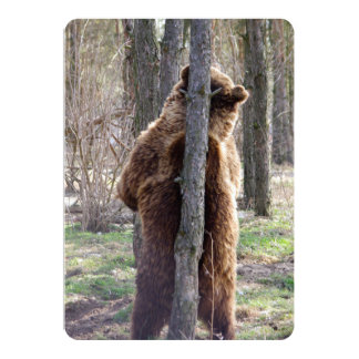 """Grizzly Bear Scratching an Itch 5"""" X 7"""" Invitation Card"""