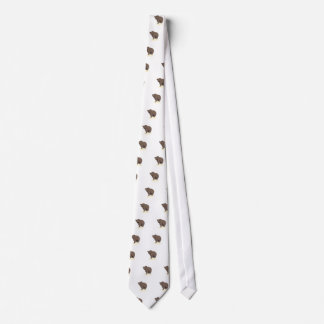 grizzly-bear-standing-on-rock-vector-clipart tie