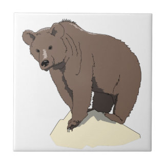 grizzly-bear-standing-on-rock-vector-clipart tile