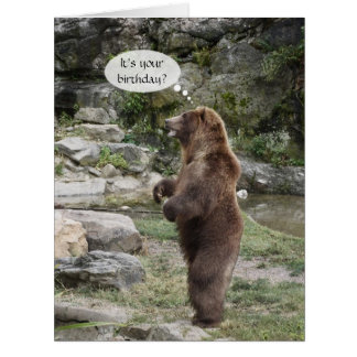 Grizzly Bear Standing Ovation BIG Greeting Cards