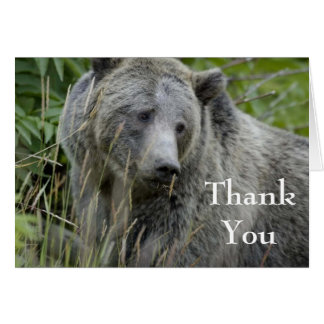 grizzly bear thank you note card