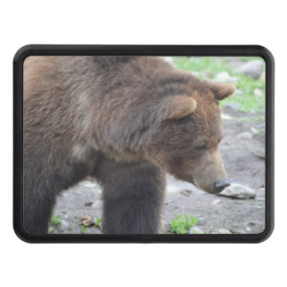 Grizzly Bear Trailer Hitch Cover