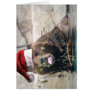 Grizzly Bear with Santa Hat Greeting Cards