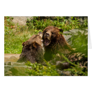 Grizzly Bears Play Fighting Card