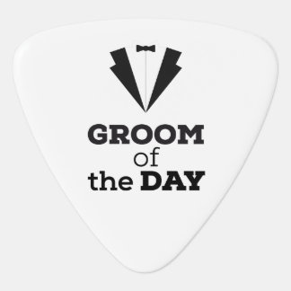 Groom of the Day Ziwph Guitar Pick
