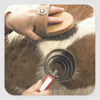 Grooming horse square sticker