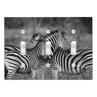 Grooming zebra light switch cover