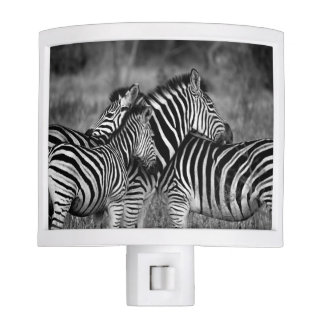Grooming zebra nite lite