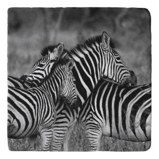 Grooming zebra trivet