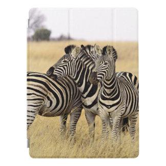 Grooming zebras iPad pro cover