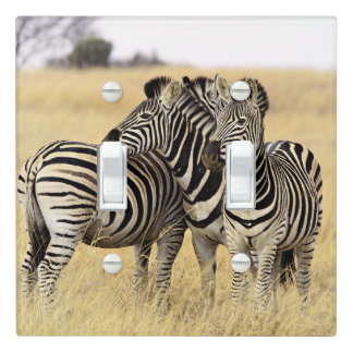 Grooming zebras light switch cover