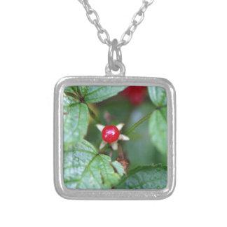 Groseille alpine (alpinum de Ribes) Pendentif
