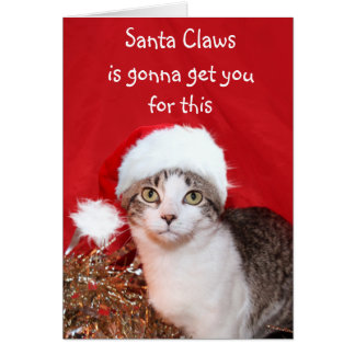 Grouchy Christmas cat Card