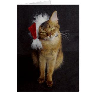 Grouchy Somali Cat in Santa Hat Christmas Card